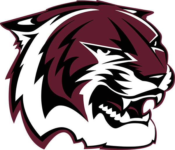 AM Consolidated HS Mascot